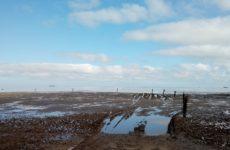 Cuxhaven - odliv