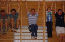 Cvičení na žebřínách